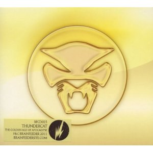 Thundercats Music on Thundercat     Walkin  Official Video     Music Pickings