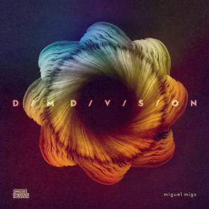 dim_division_miguel_migs