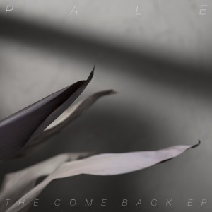 Pale - The Comeback EP (2014)