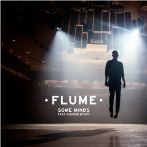 Flume - Some Minds